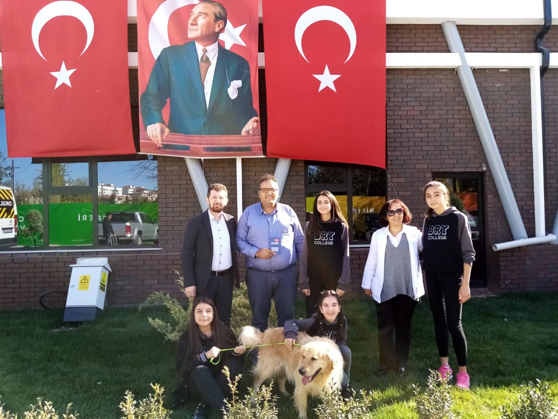 Blog | Birey | Sokak Hayvanları Projesi Gerçekleştirildi