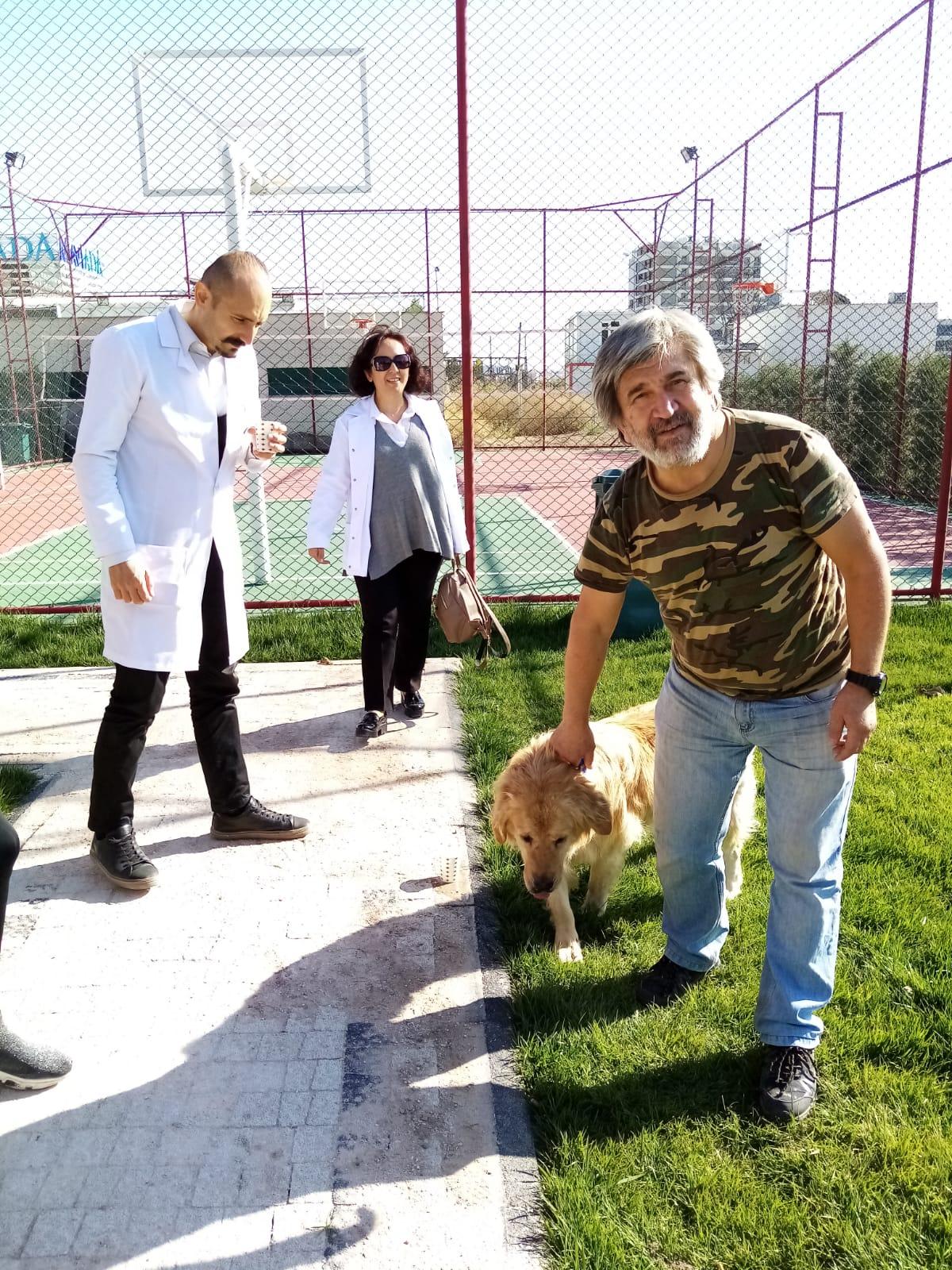 Birey | Blog | Sokak Hayvanları Projesi Gerçekleştirildi